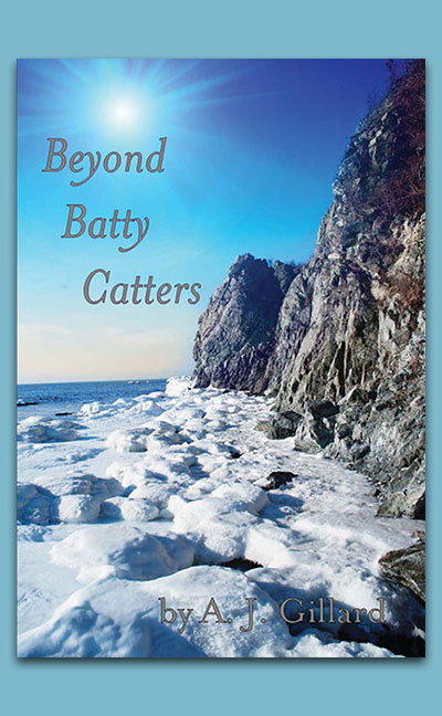 Beyond-Batty-Catters